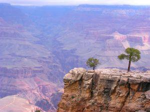grand-canyon-arizona-518404-m