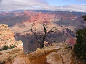 grand-canyon-arizona-518405-m