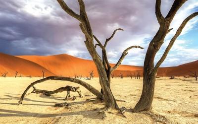 Solo Travel Destination Safari in Namibia: for less crowded wildlife tours