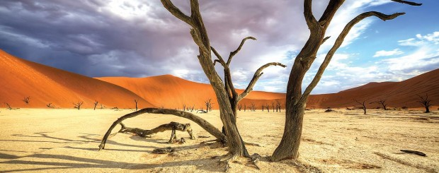 Solo Travel Destination Safari in Namibia: for less crowded wildlife tours