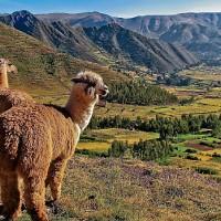 Latin America 10 Ways-SoloTravelPricingTracker