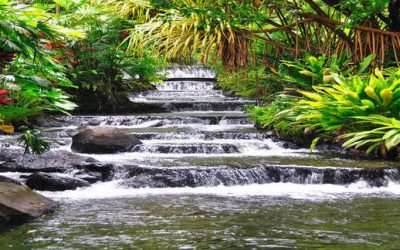 Solo Travel Destination-Costa Rica a Top Eco Tour and Adventure a World Class Green Venue