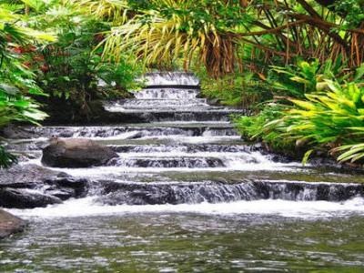 Solo Travel Destination-Costa Rica a Top Eco Tour and Adventure a World Class Green Venue