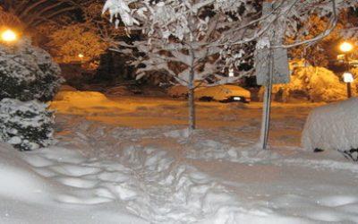 Snow Travel Off-Season
