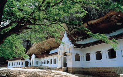 Solo Travel Cultural Adventure Sri Lanka Many Journeys in One Trip