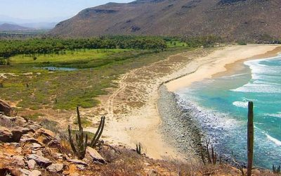 Adventure Travel Multisport Baja Solo Travel Deal Great Prices Great Trips