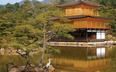 Top Solo Travel Destinations-Walking Japan