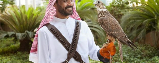 8 Updated Tips-Solo Travelers in the Middle East Qatar