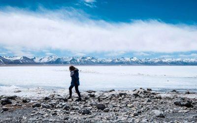 Snow Scene Tibet Solo Savings