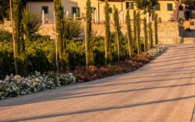 Tuscany-New Deals-Solo Travel Pricing Tracker