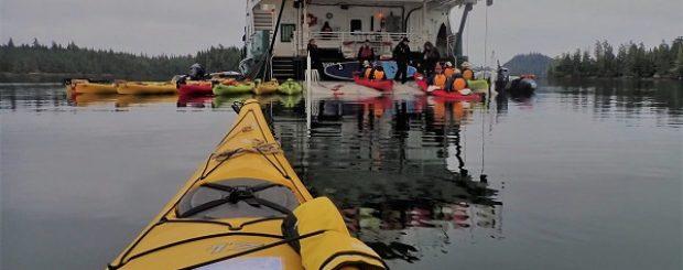 Uncruise Adventure Kayaker