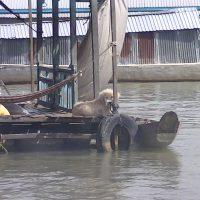 Solo Travel Cambodia Boat Village